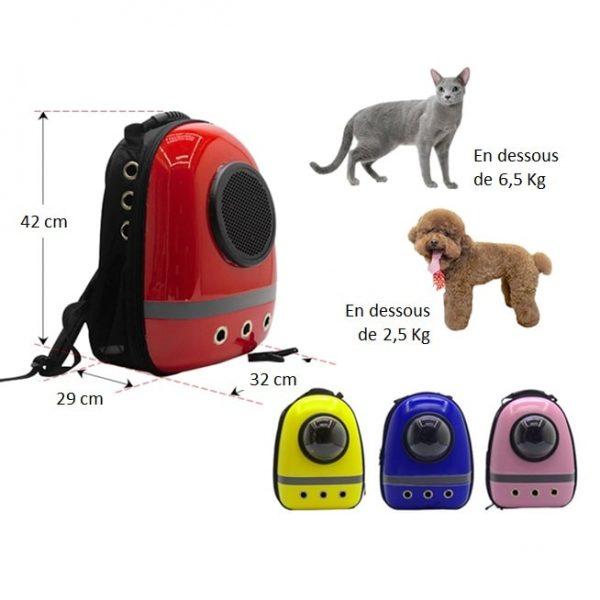 dimensions-du-sac-moto-pour-chien